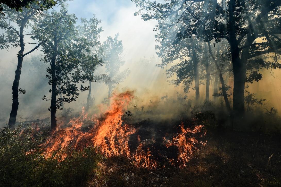 Comprendre les feux de for t et mieux les combattre - Faire un feu de camp dans son jardin ...
