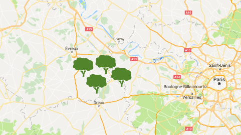 Forest Sponsoring