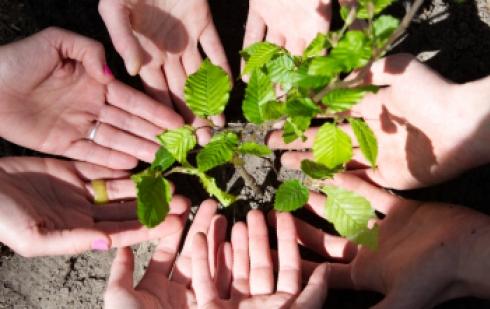 En savoir plus sur Reforest'Action
