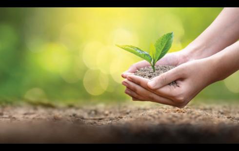 La Médicale devient Reforest'Acteur