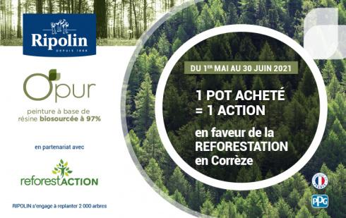 Avec RIPOLIN, 2000 arbres plantés !