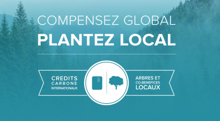 carbon offsetting, France, credits, forest, co-benefits, local, biodiversity,  stakeholders